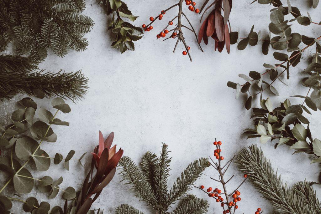 雪の上のモミの木